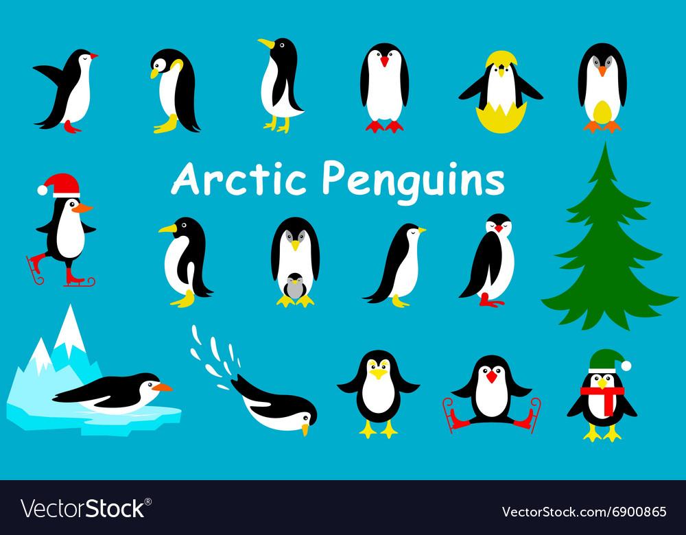 Set of cute Christmas character - penguin