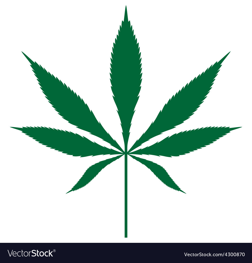 Cannabis leaf3 resize vector image