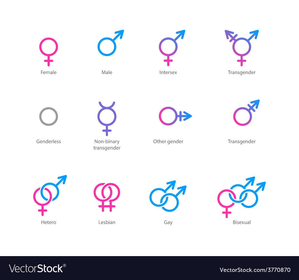 gender symbol icon set royalty free vector image vectorstock