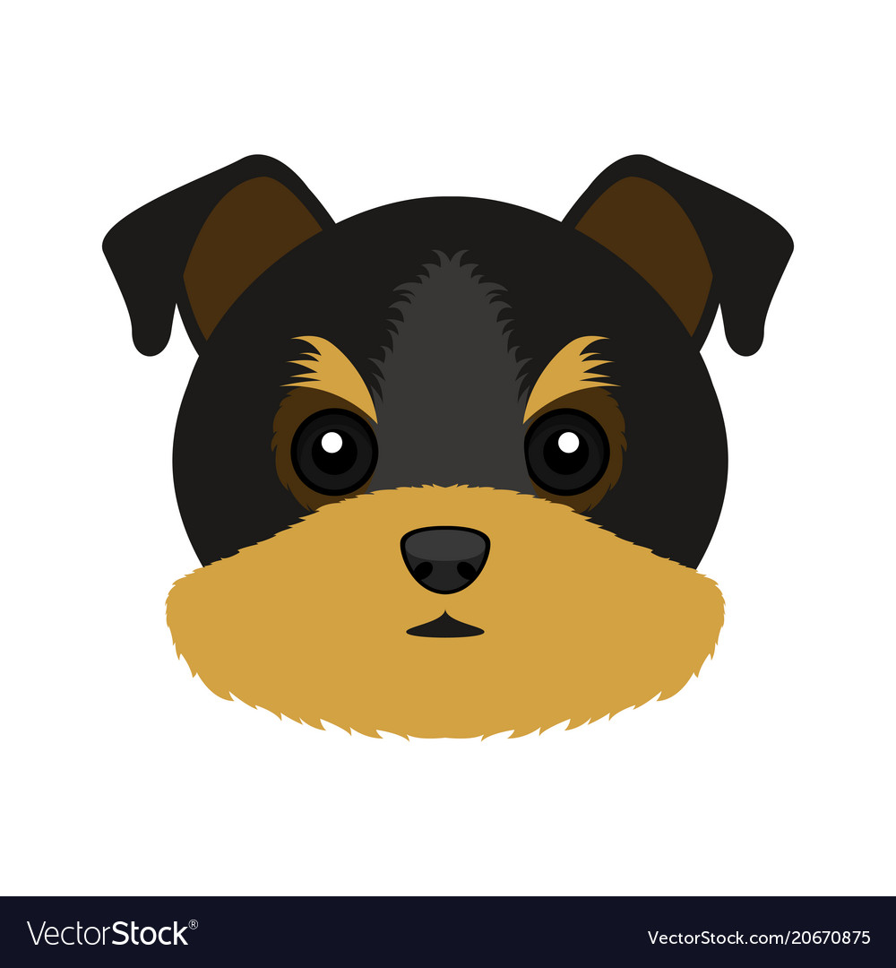 Cute yorkshire terrier dog avatar