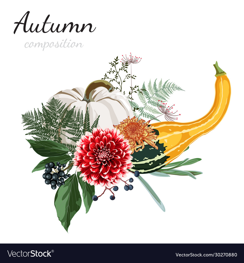 Autumn composition beautiful flowers herbs
