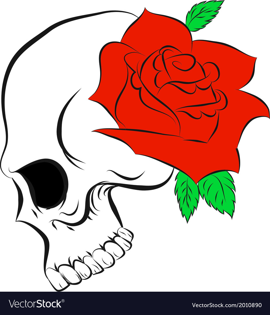 pirate skull and one rose royalty free vector image rh vectorstock com rose vector graphics rose vectorielle