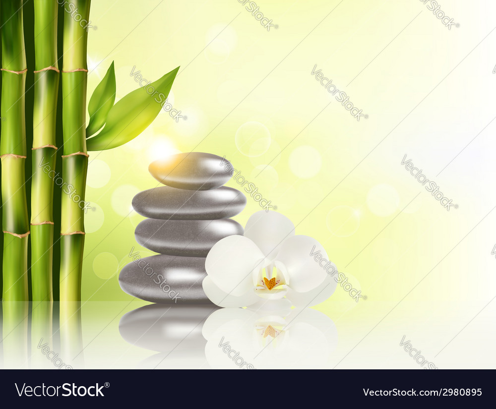 spa background with bamboo and stones royalty free vector