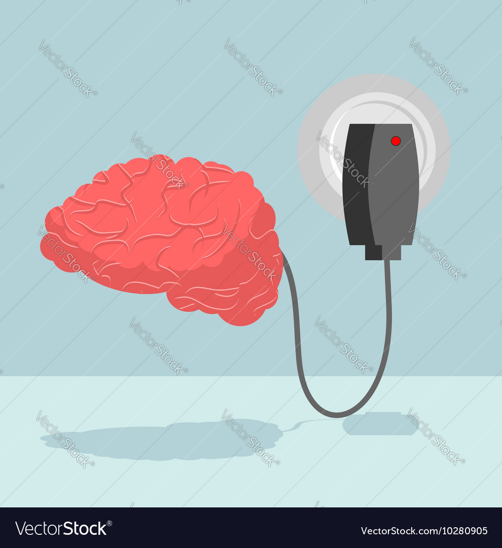 Charge Brain Charger For Cerebrum Marrow Is Vector Image