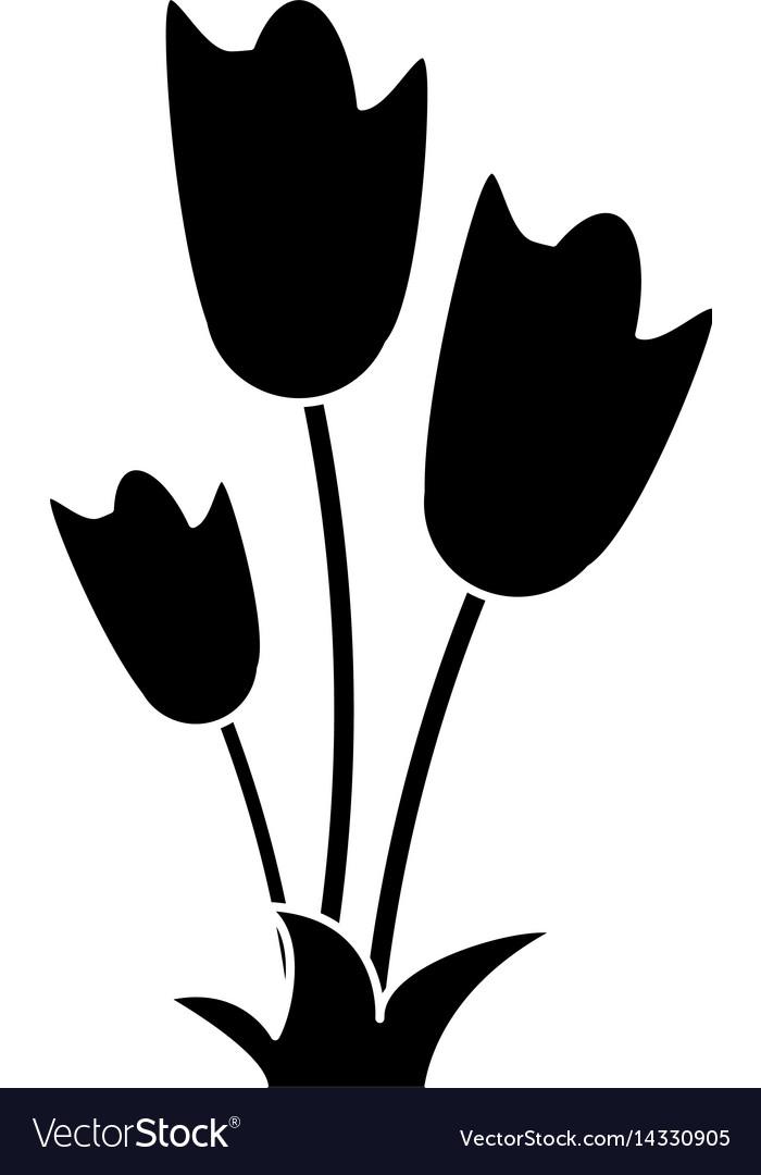 Women day tulip bunch flower pictogram vector image