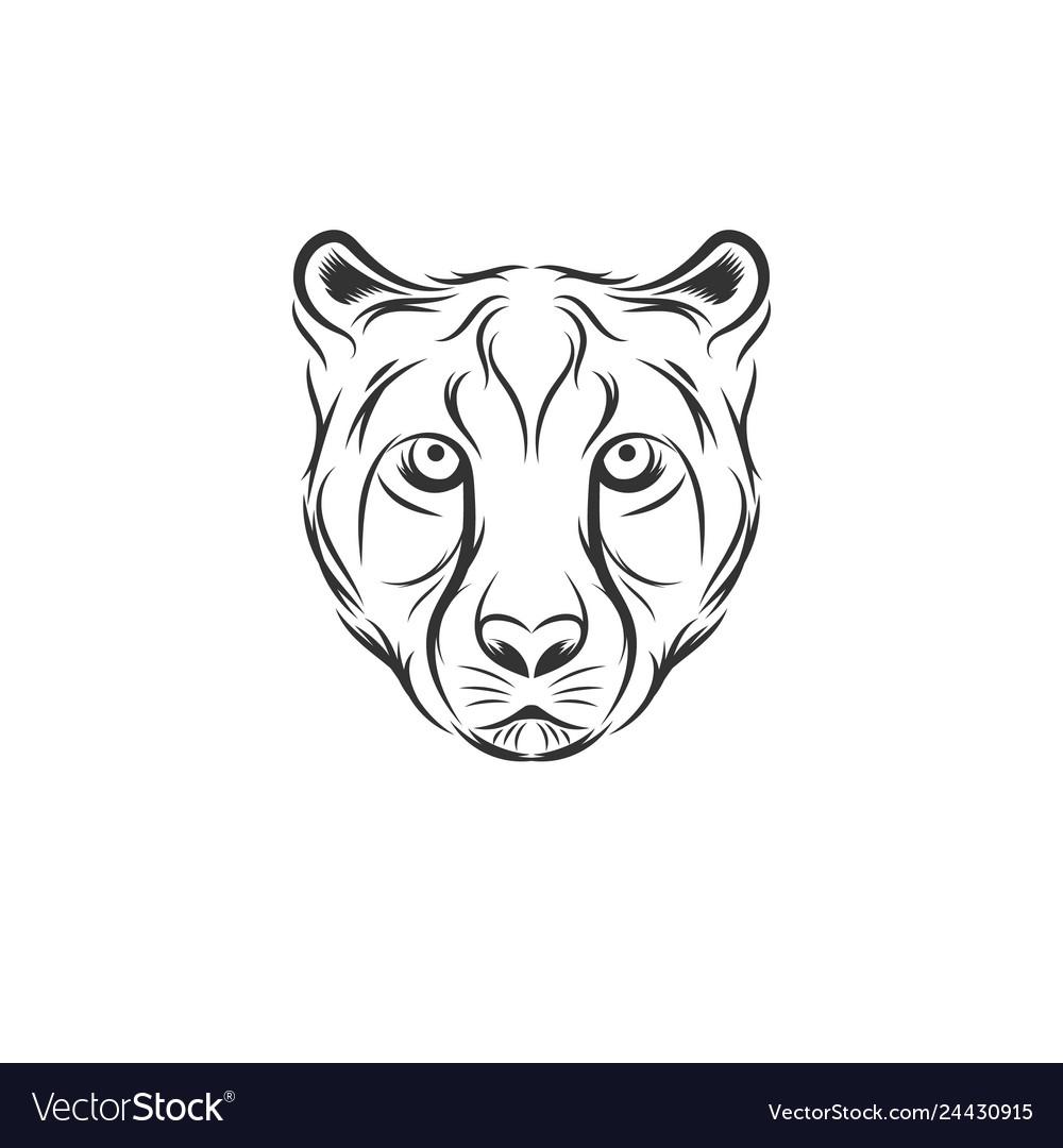 Cheetah head designs