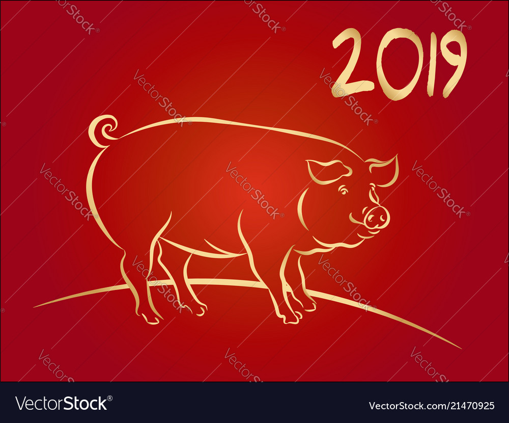 2019 happy chinese new year template vector image