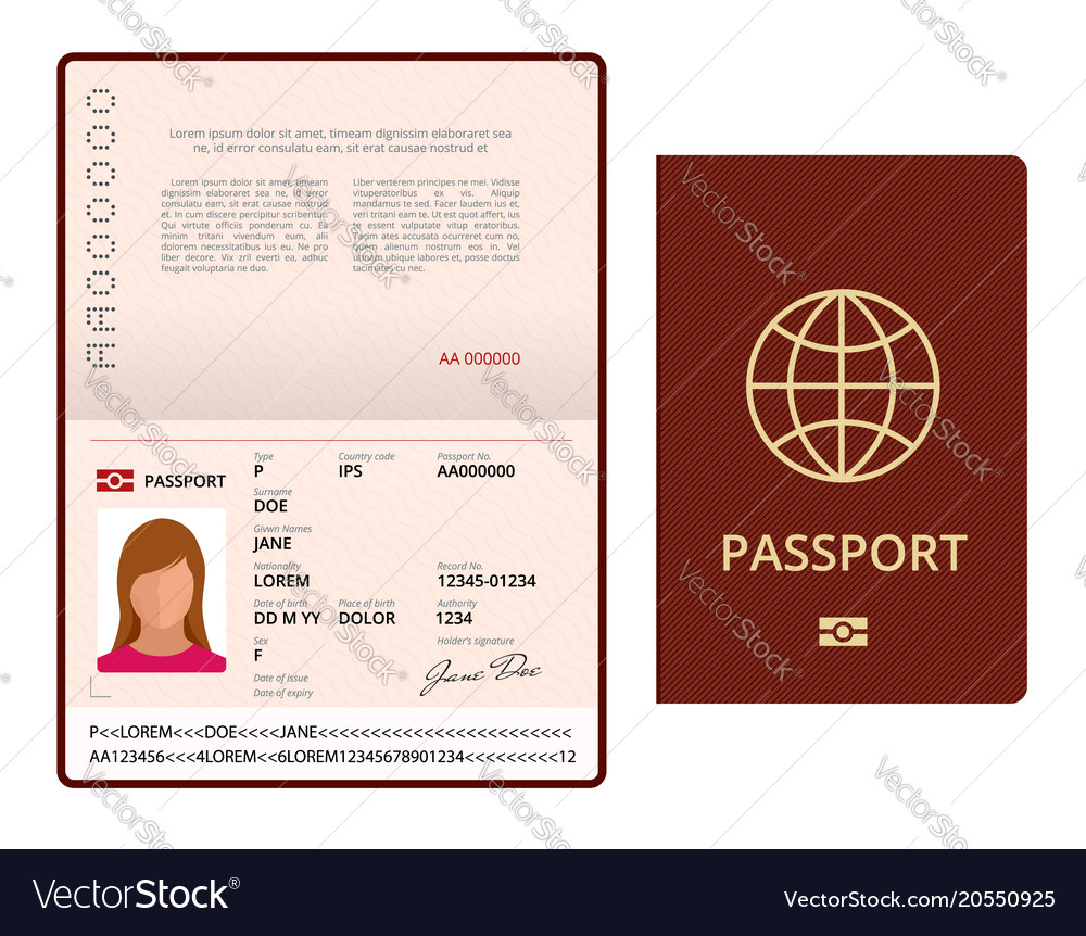 Blank open passport template international Vector Image