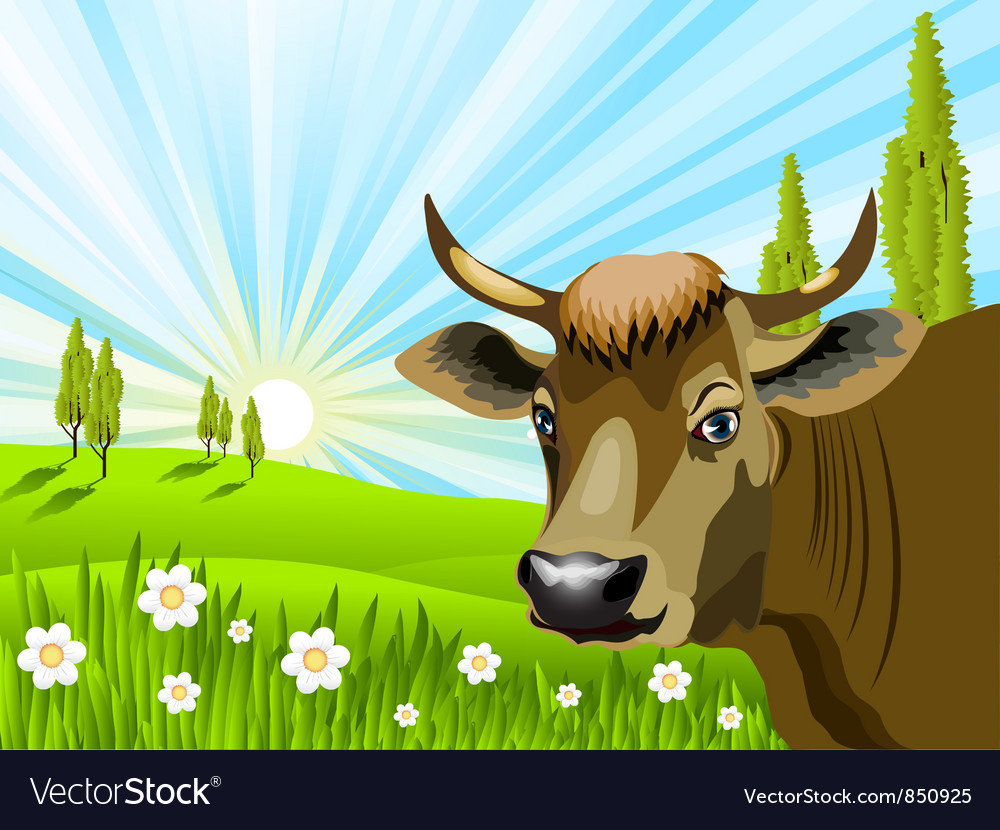 Cow in field vector image