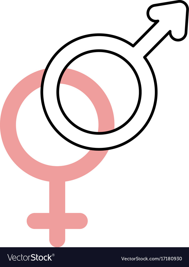 Gender Symbol Of Men And Women On White Background