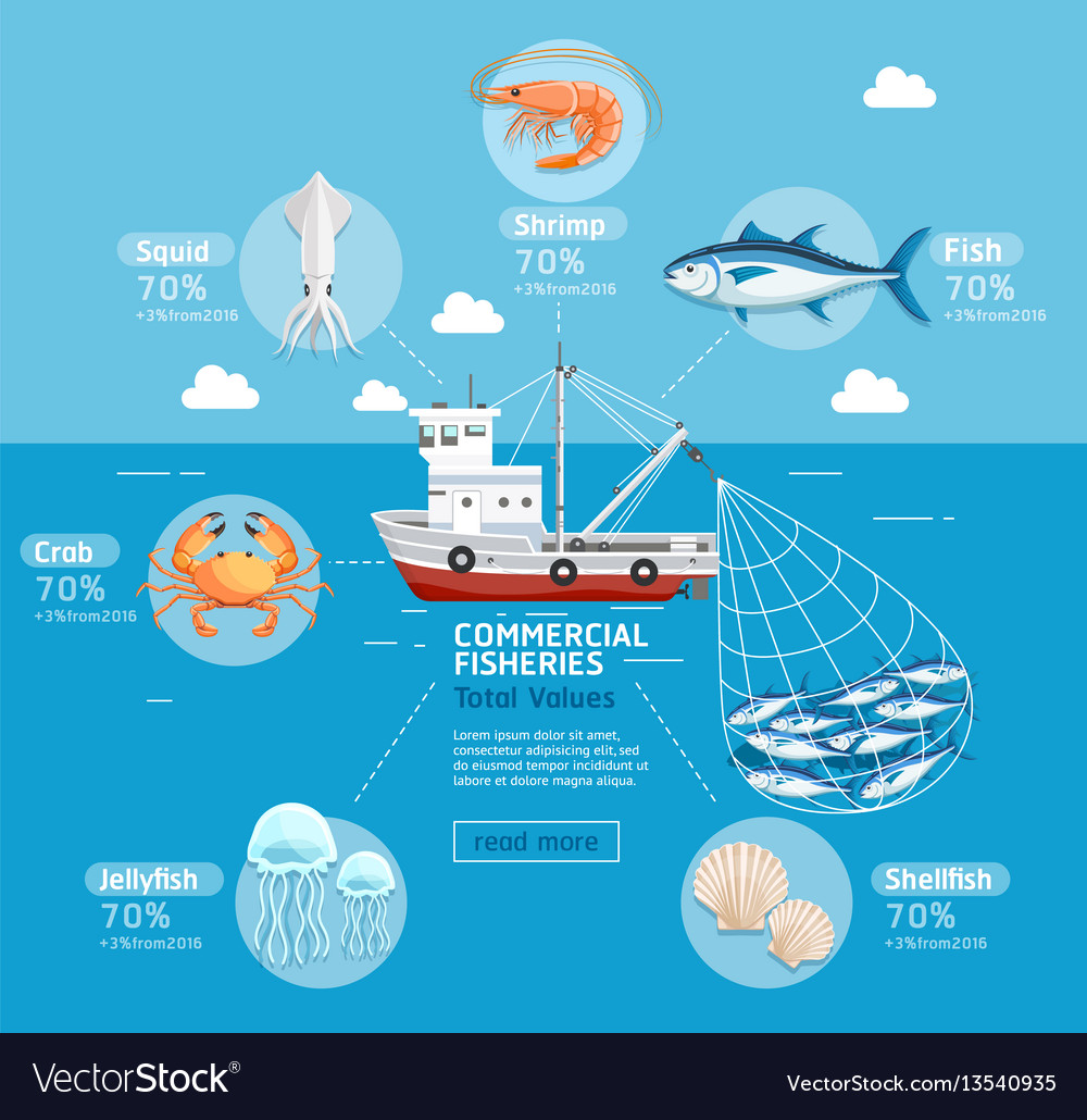 Commercial fishing business plan infographics
