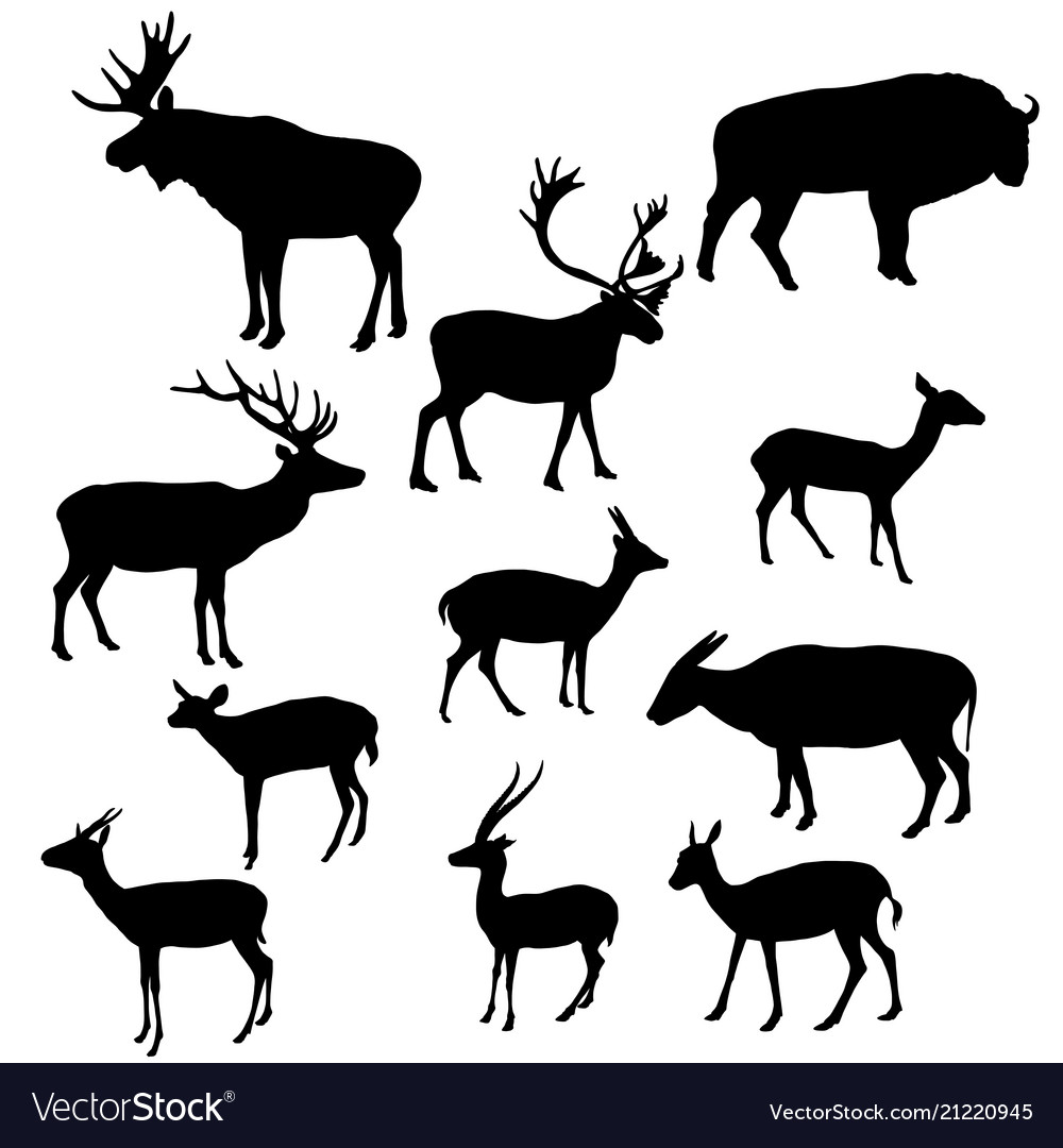 Silhouettes horned animals