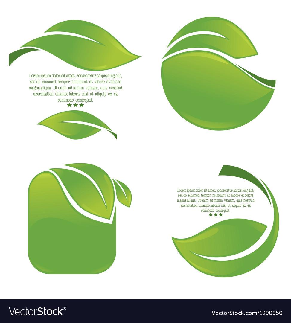 Green leaves frames