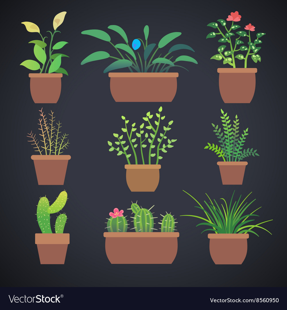 House plants flowers in pots flat icons