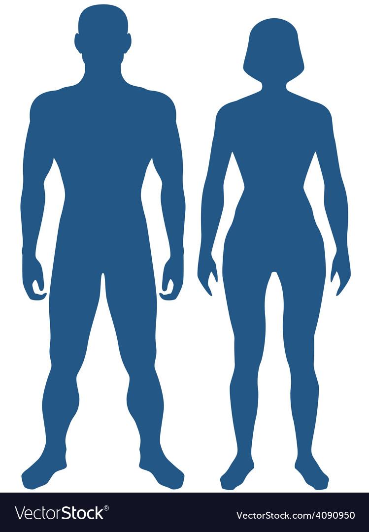 Human body vector image
