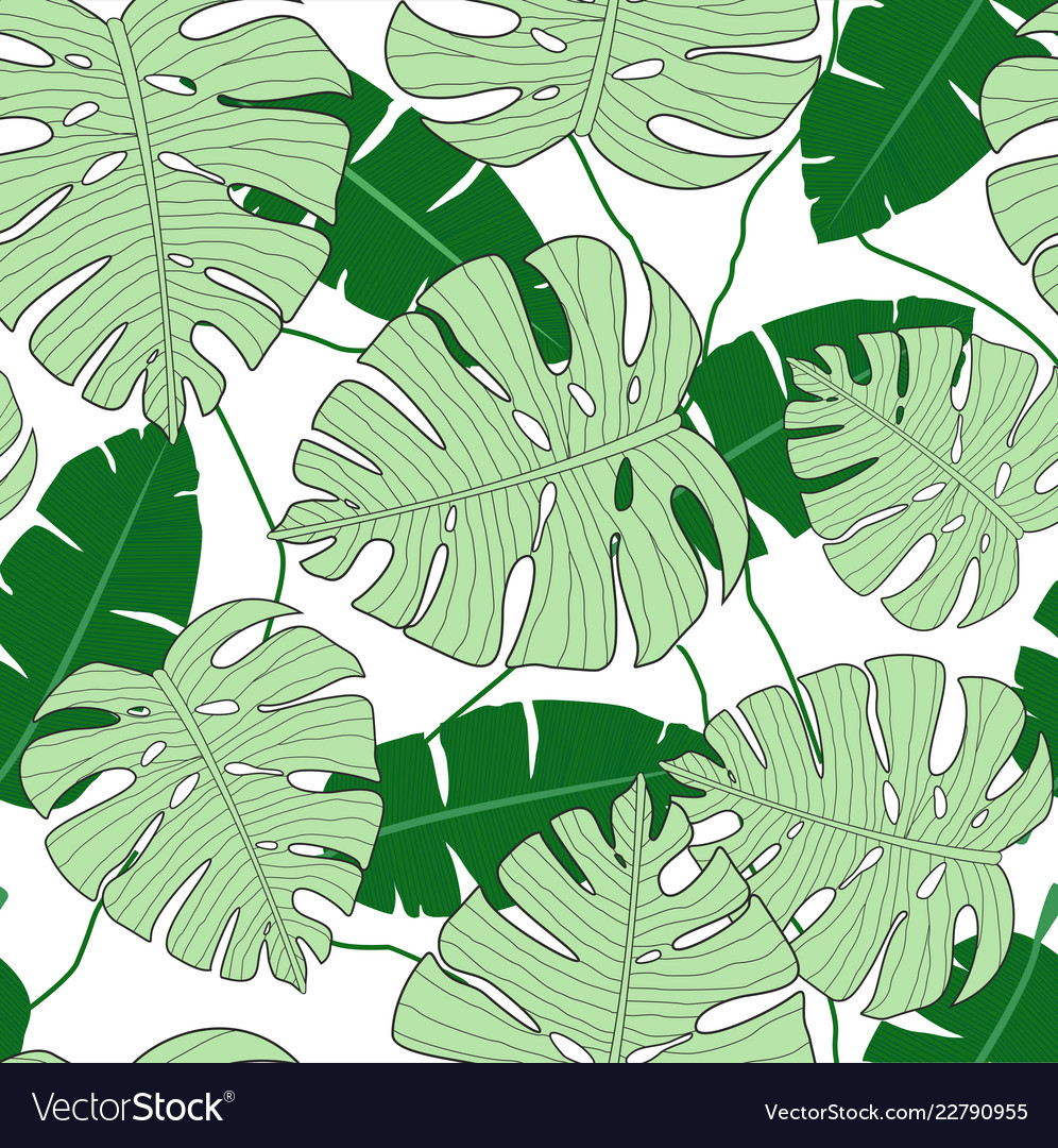 Monstera leaves seamless