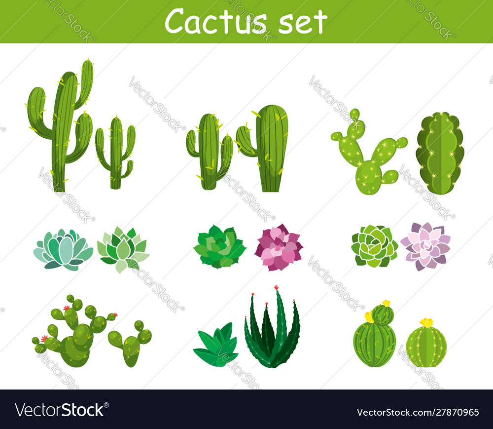 Cartoon cactus with flowers