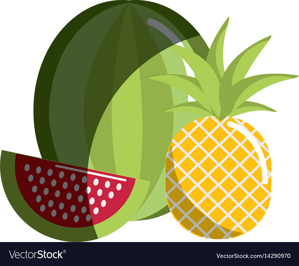 Watermelon and pineapple fruit icon vector image