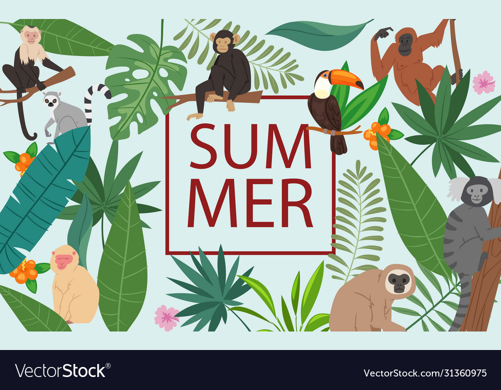 Monkeys and tropical leaves and summer frame