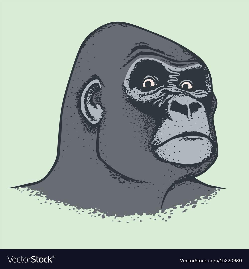 Monkey concept vector image