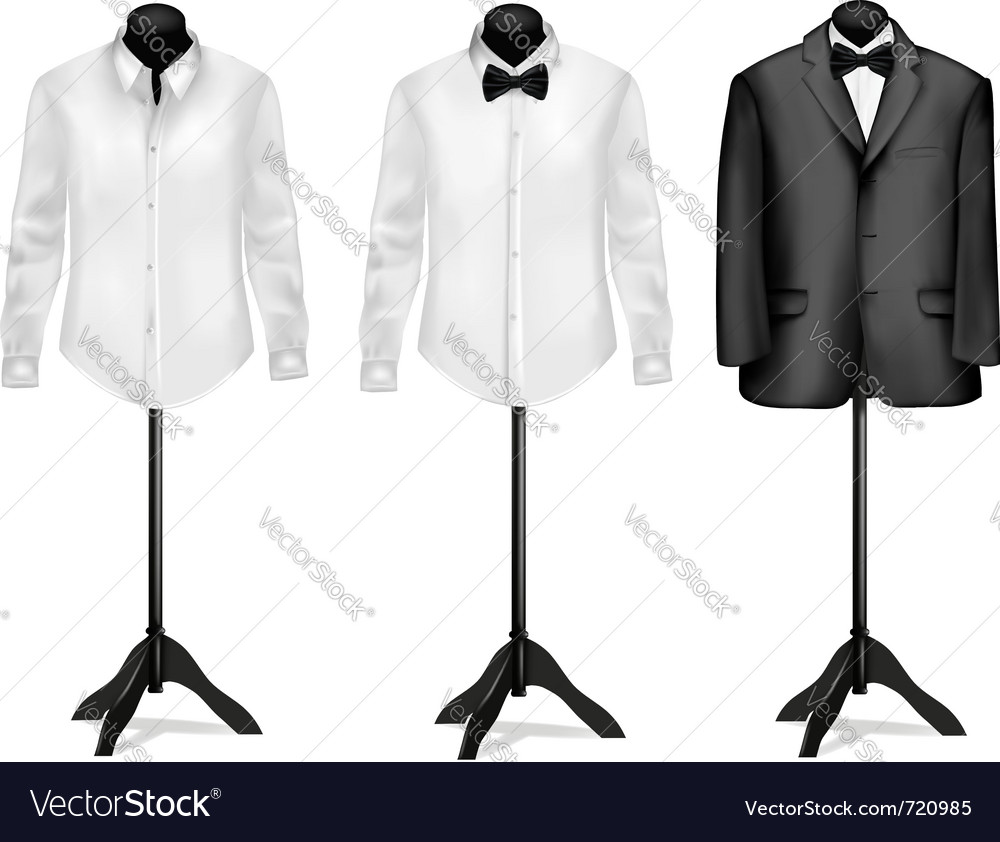 Black suit and white shirt vector image