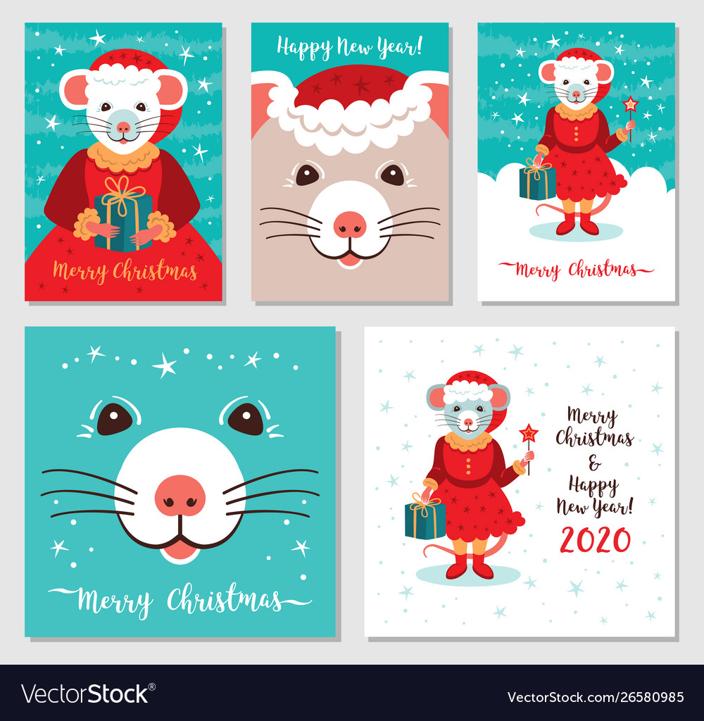 Funny Christmas Images.Funny Christmas Rats Greeting Cards Merry