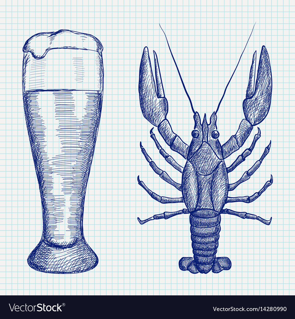 Lobster and glass of beer hand drawn sketch