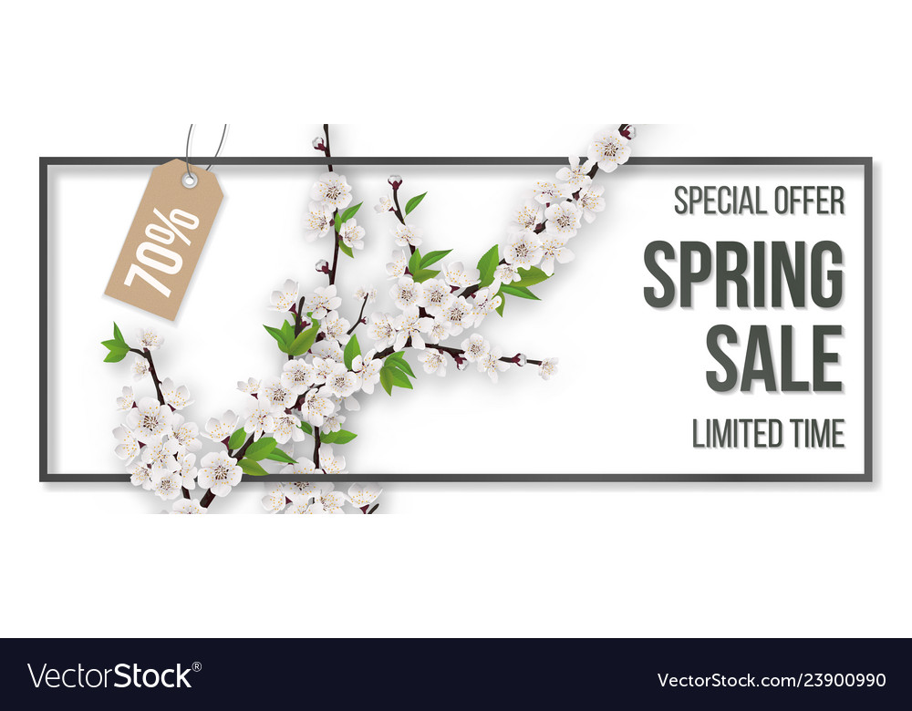 Spring sale frame blooming branches