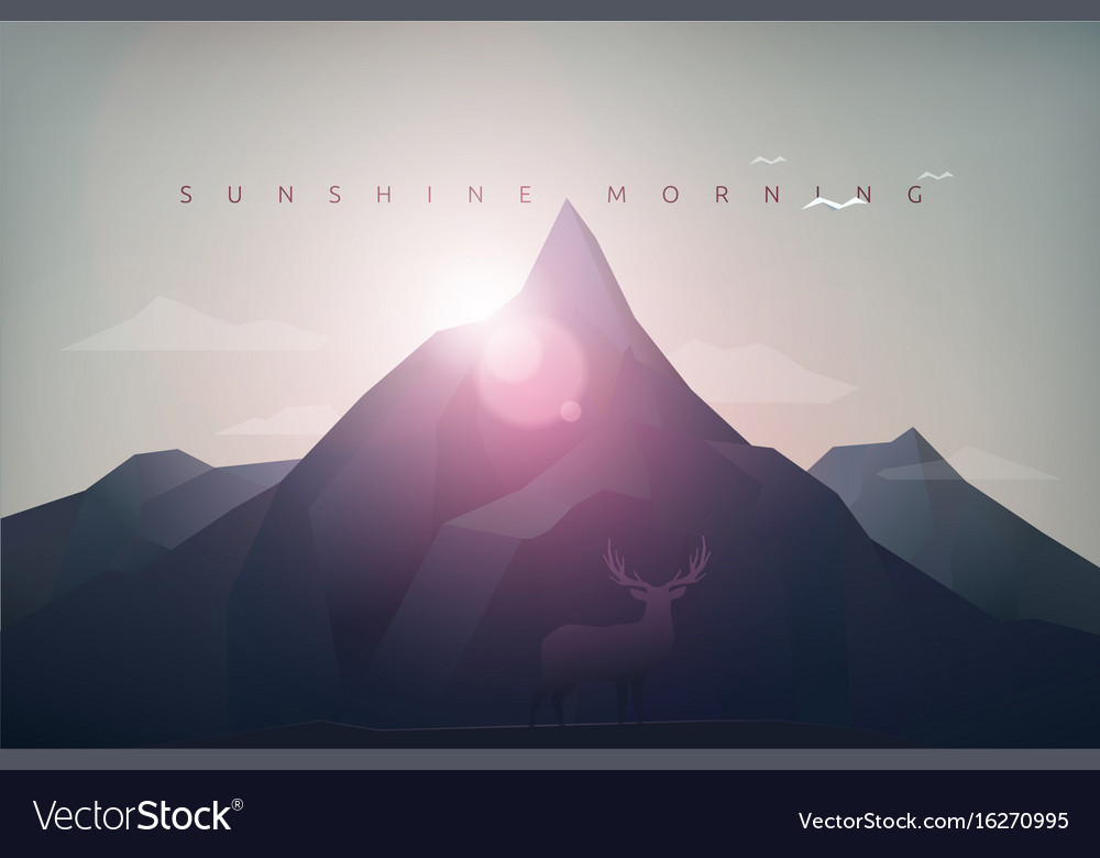 Mountain sunshine morning vector image