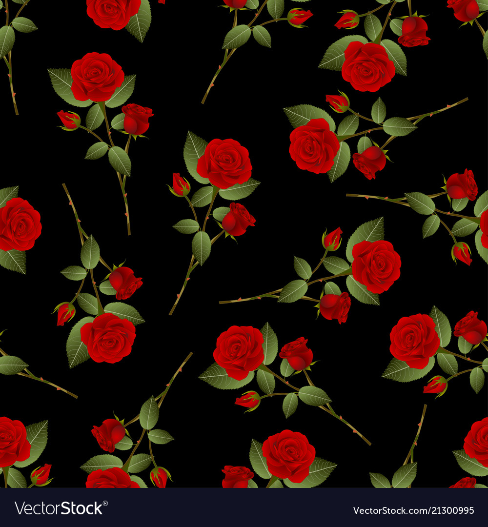 Red Rose Bouquet On Black Background Royalty Free Vector