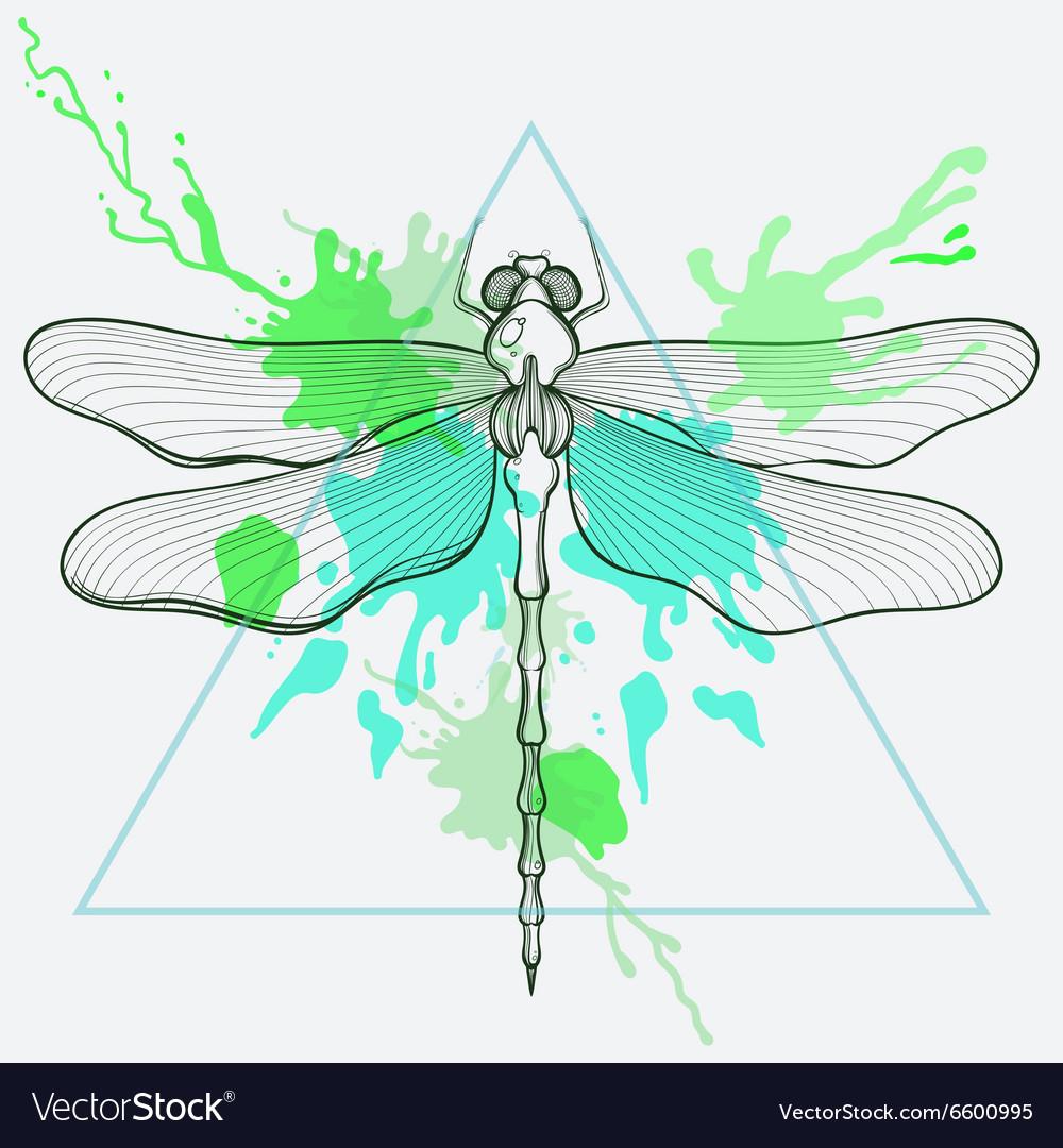 Zentangle stylized Dragon fly in triangle frame