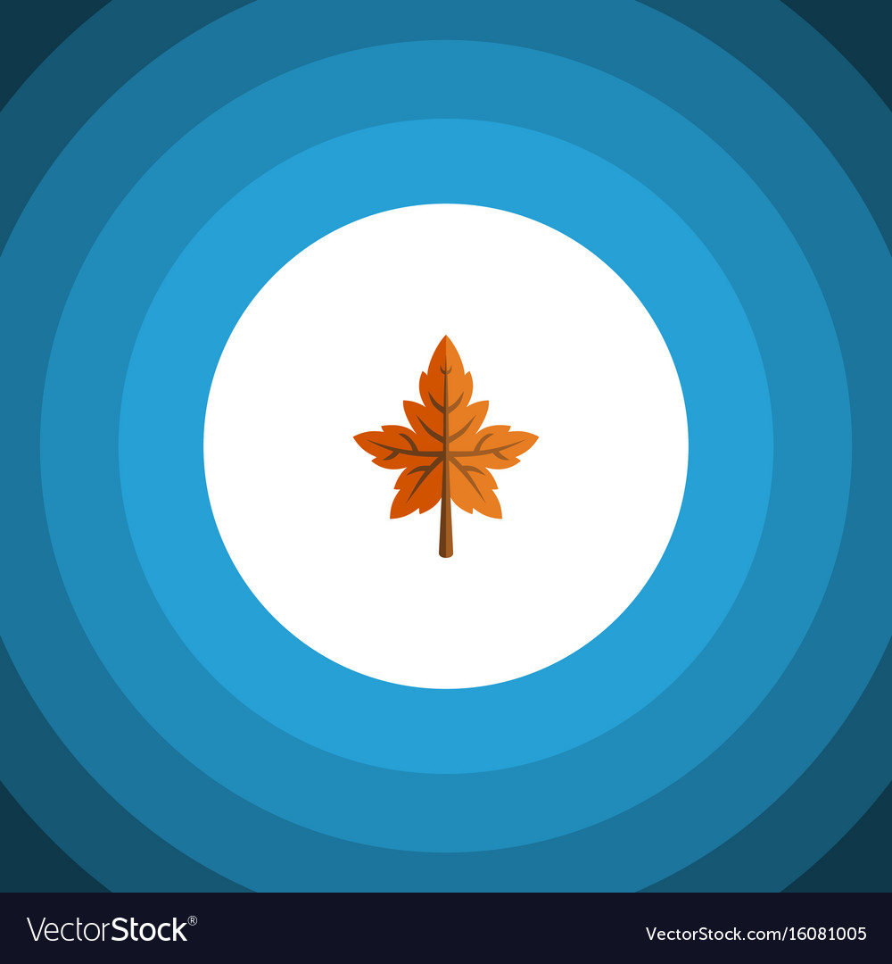Isolated aspen flat icon alder element can