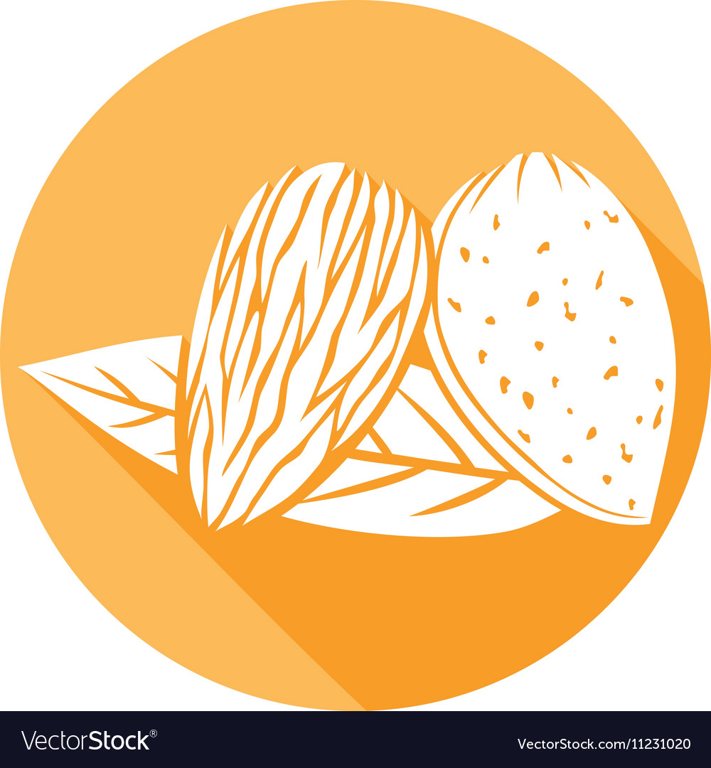 Almond with Leaves Icon