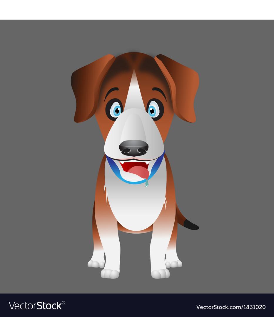 Dog beagle facing forward vector image