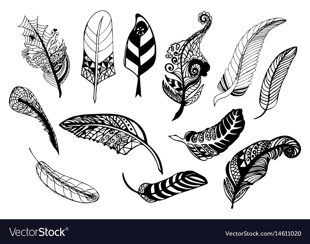 Hand drawn whimsical feather collection
