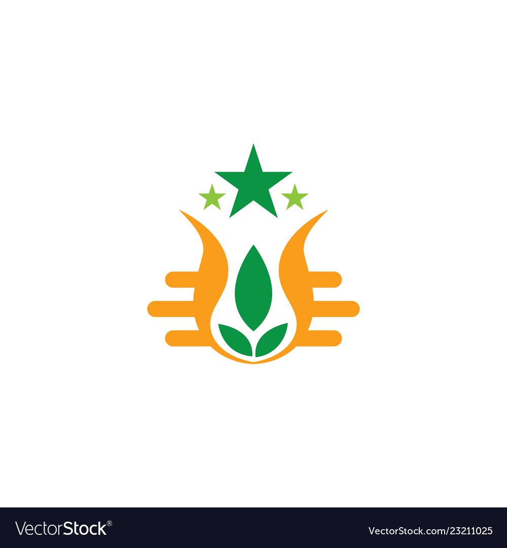 Abstract leaf star eco logo