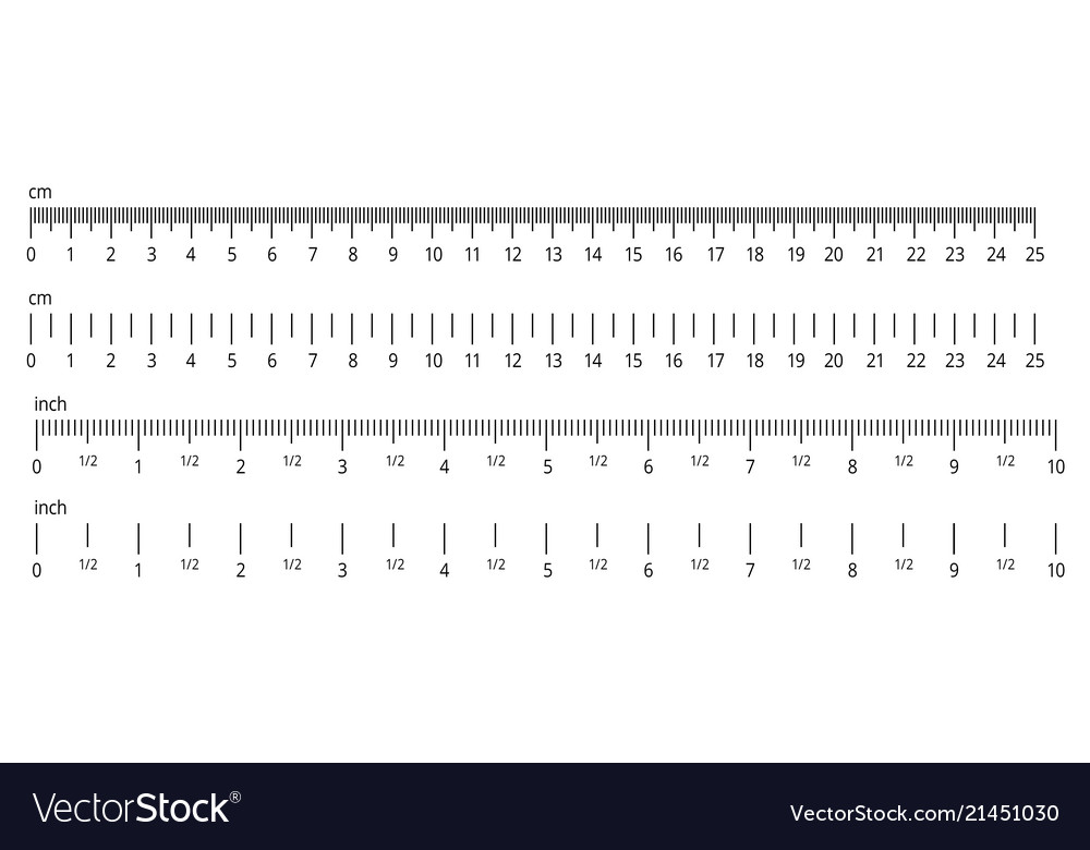 Inch And Metric Rulers Centimeters And Inches Vector Image