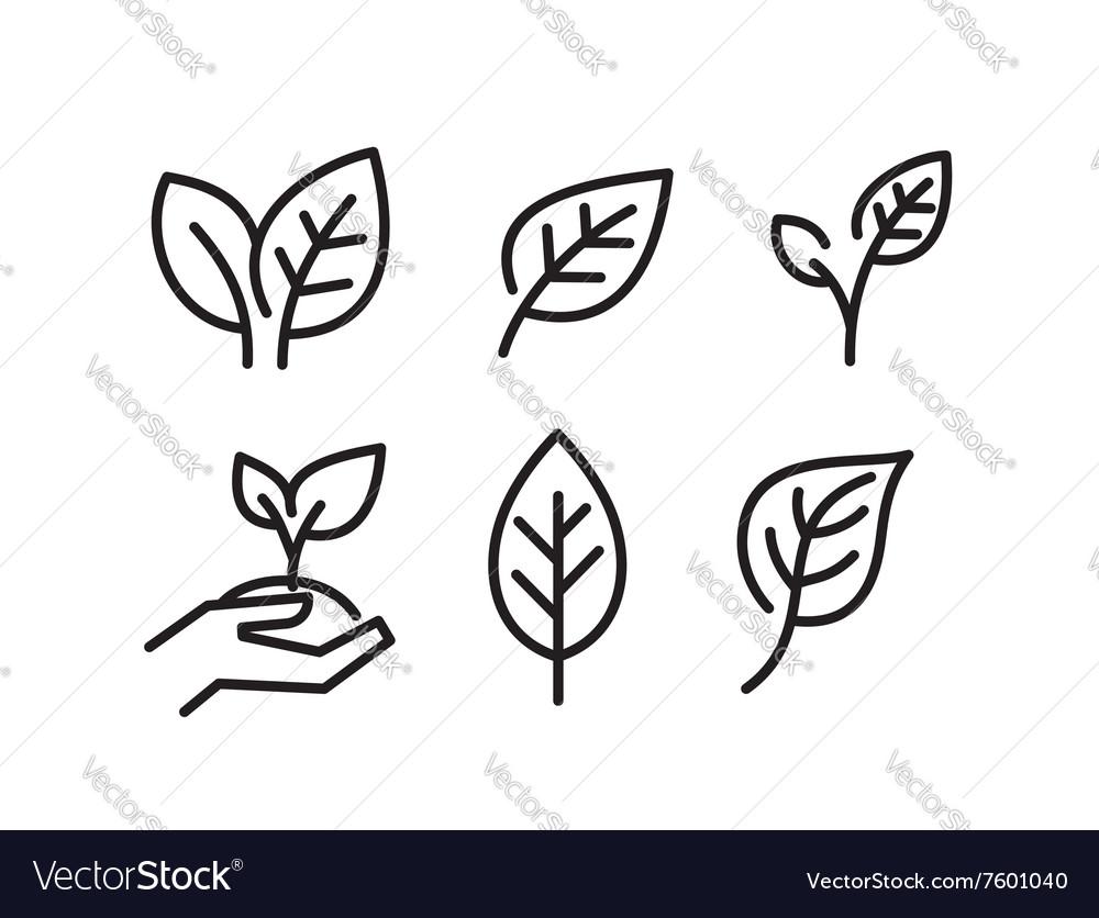 Black leaves icons