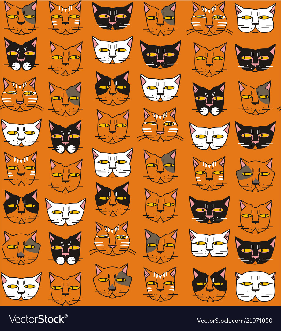 Funny cats muzzles