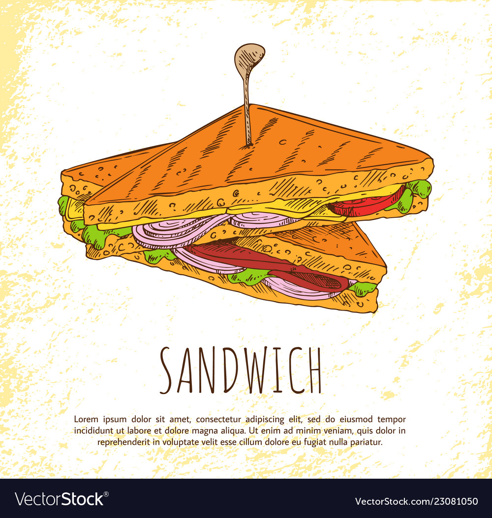 Sandwich with onion salad meat and tasty cheese