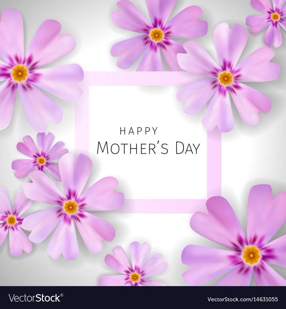 Mothers day greeting card with flowers of phlox vector image m4hsunfo