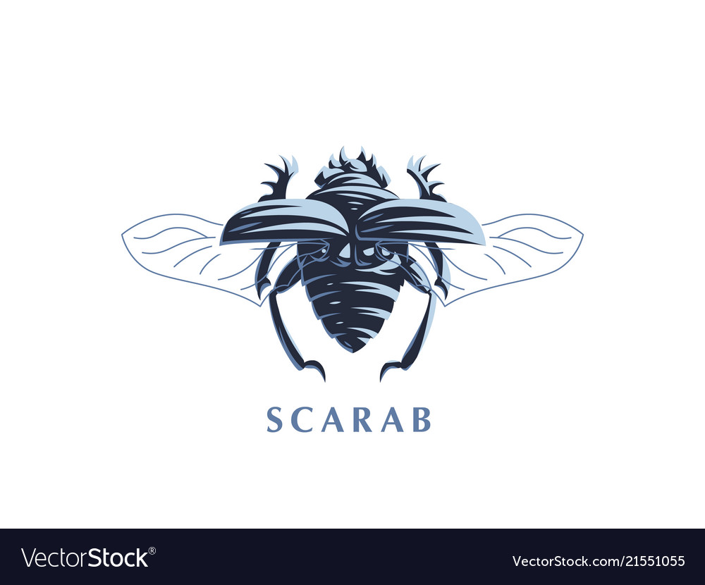 Scarab beetle with open wings