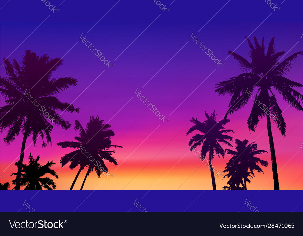 Black palm trees silhouettes at colorful sunset