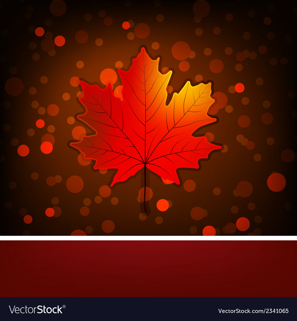 Card with autumn maple leaf template EPS 8