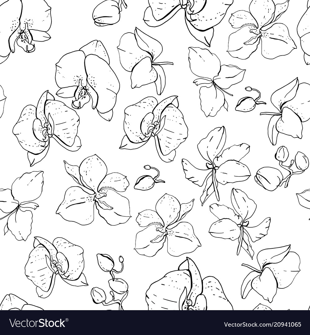Seamless floral pattern with romantic flowers
