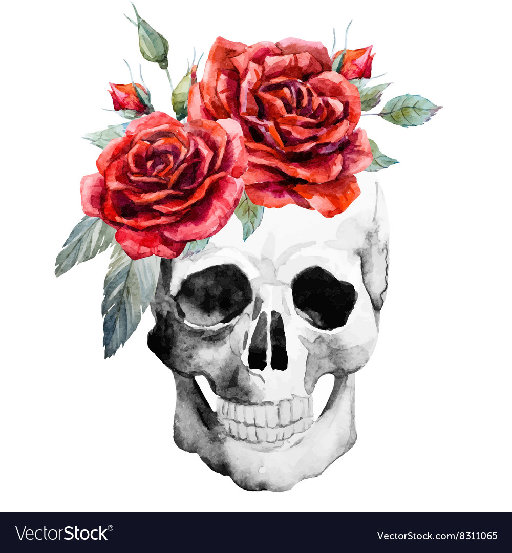 Watercolor hand drawn skull with roses