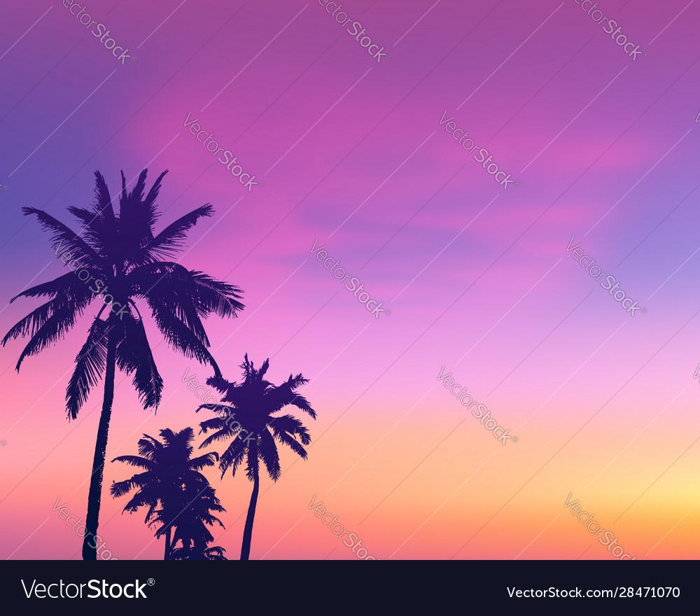 Dark palm trees silhouettes on light pink sunrise