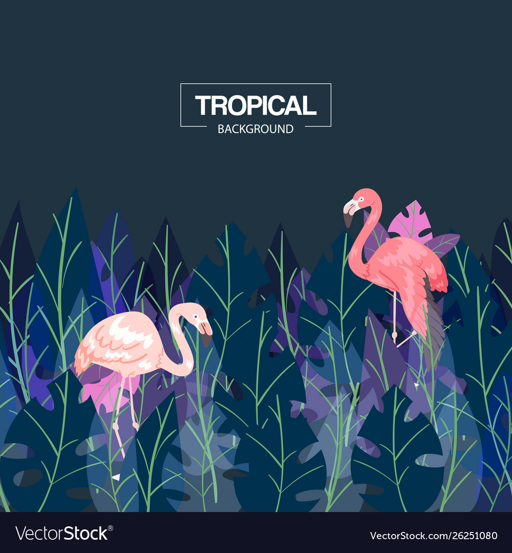 Tropical background banner
