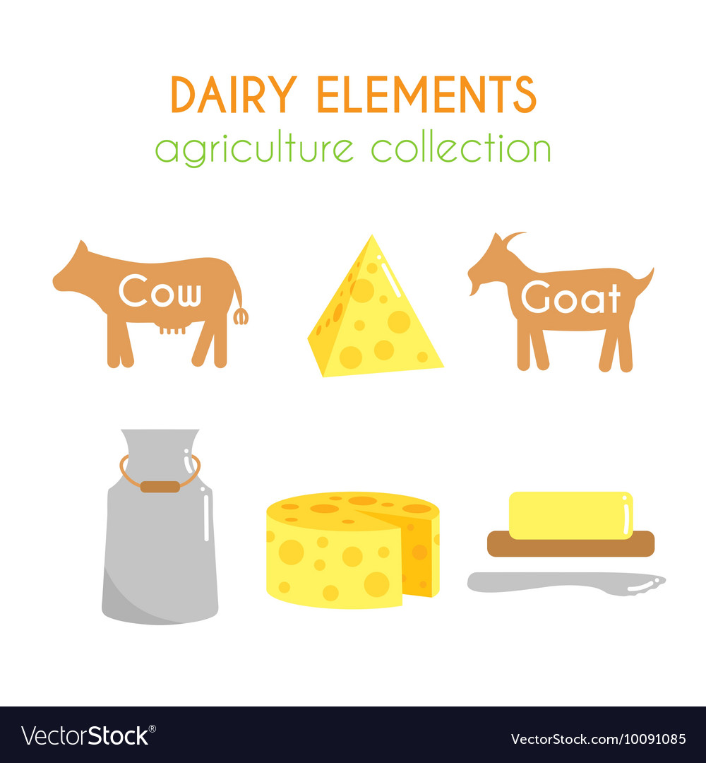 Dairy Cow and goat cartoon