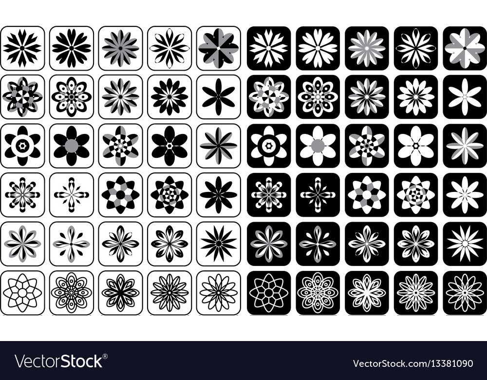 Set flowers and ornament icons vector image